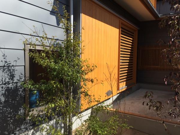 玄関脇の緑のスペース